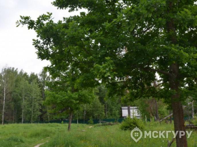 """""""Опалиха 03"""" – гармония с природой в 20 минутах от Москвы - Фото 11"""