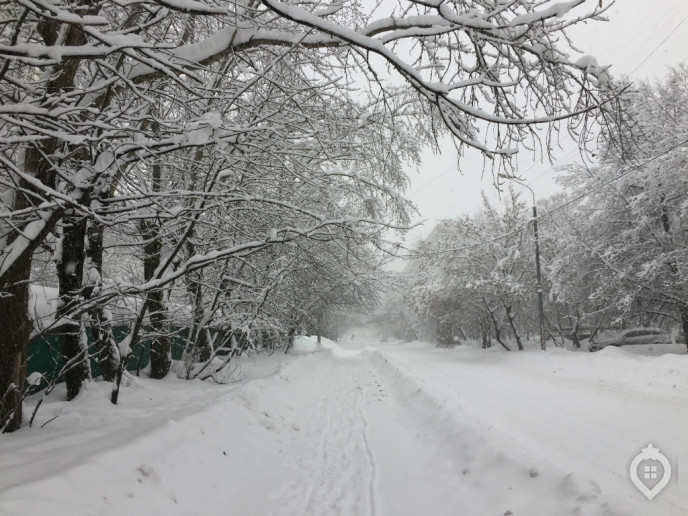 "ЖК ""Летний сад"": оранжерея новых квартир - Фото 53"