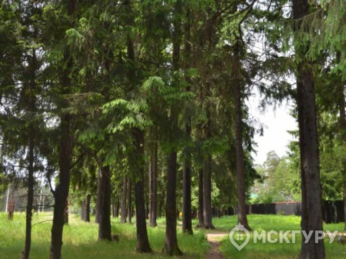 """""""Опалиха 03"""" – гармония с природой в 20 минутах от Москвы - Фото 12"""