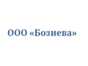 Компания 'Бозиева'