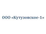 Компания 'Кутузовское-1'