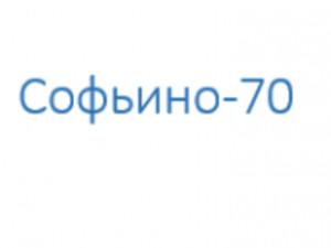 Компания 'Софьино-70'