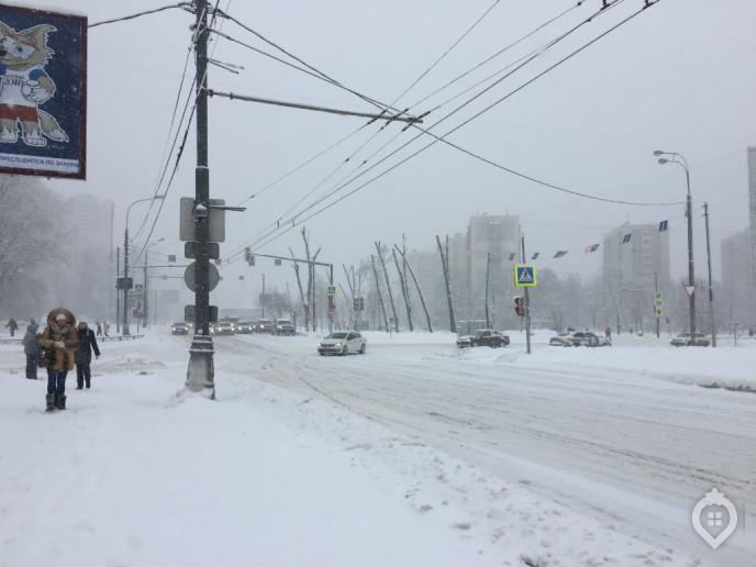 "ЖК ""Летний сад"": оранжерея новых квартир - Фото 6"