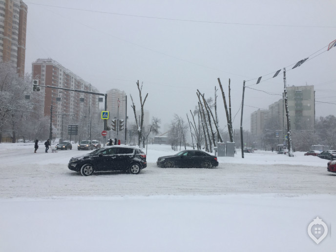 "ЖК ""Летний сад"": оранжерея новых квартир - Фото 9"