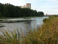 Эксперты составили обзор комплексов Новой Москвы, расположенных у водоемов и рек