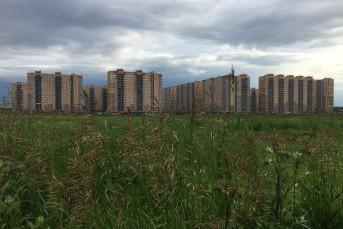 """ЖК """"Пригород Лесное"""": город в поле"""